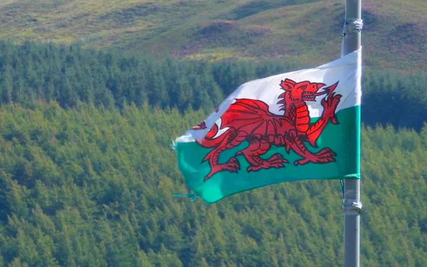 C:\Users\Alejandro\AppData\Local\Microsoft\Windows\INetCache\Content.Word\Welsh-Flag-of-Wales-CC-Chris-Downer-via-Geograph-dot-org-dot-uk.jpg